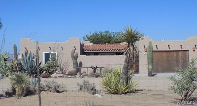 Dolan Springs Single Family Home For Sale: 14517 Cattle Drive