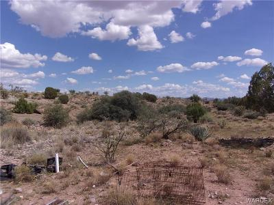 Kingman Residential Lots & Land For Sale: 0100 Rodeo Avenue