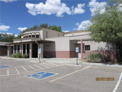 Kingman Commercial For Sale: 1101 Riata Valley Rd