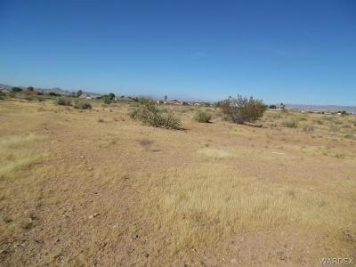 Kingman AZ Residential Lots & Land For Sale: $8,000