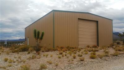 Mohave County Residential Lots & Land For Sale: 26166 N Tamarisk Street