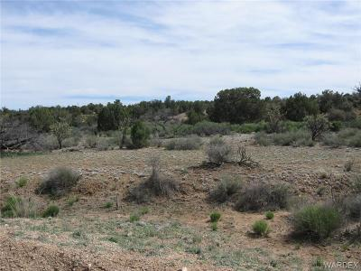 Kingman Residential Lots & Land For Sale: 0000 Lan