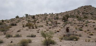 Kingman AZ Residential Lots & Land For Sale: $11,500