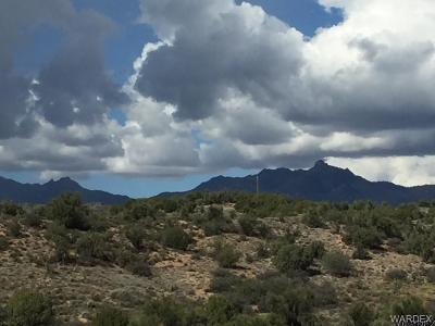 Kingman AZ Residential Lots & Land For Sale: $69,000
