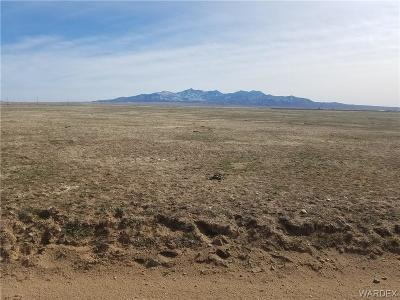Mohave County Residential Lots & Land For Sale: Parker Road