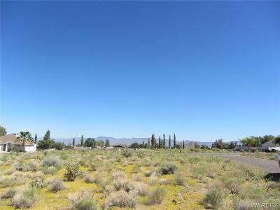 Kingman Residential Lots & Land For Sale: 9687 N Vista Drive