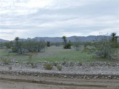 Mohave County Residential Lots & Land For Sale: 4891 N Escuela