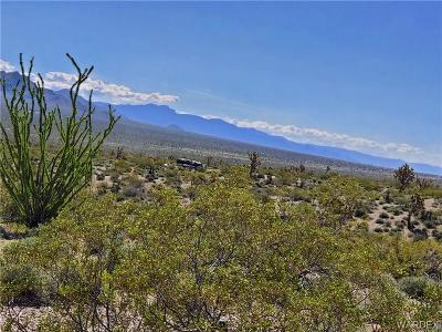 Mohave County Residential Lots & Land For Sale: Lots 2903 & 2904 Sportsman Drive