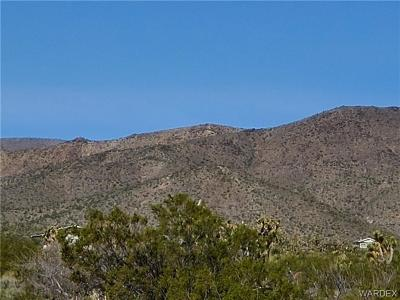Mohave County Residential Lots & Land For Sale: Lots 3130 & 3131 Spring Drive