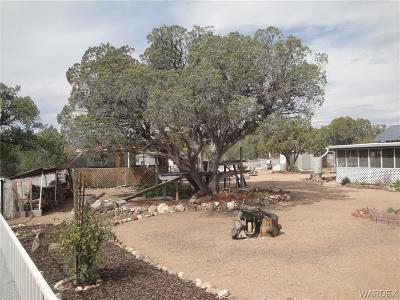 Kingman Residential Lots & Land For Sale: 0000 McKenzie Drive