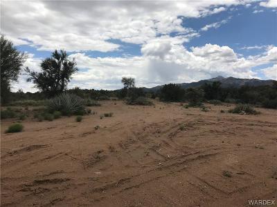 Kingman AZ Residential Lots & Land For Sale: $49,900