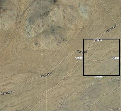Mohave County Residential Lots & Land For Sale: Tbd Saguaro Boulevard