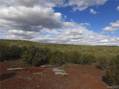 Kingman AZ Residential Lots & Land For Sale: $52,500