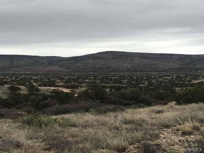 Kingman Residential Lots & Land For Sale: Stephan Road