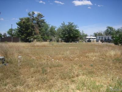 Kingman AZ Residential Lots & Land For Sale: $14,000