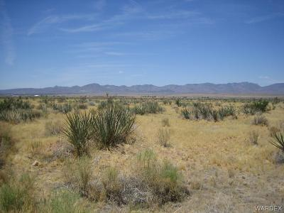 Kingman Residential Lots & Land For Sale: 5744 N Webb Drive