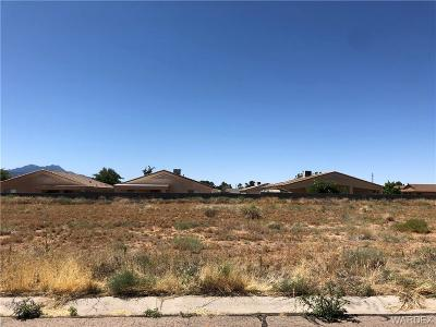 Kingman AZ Residential Lots & Land For Sale: $25,000
