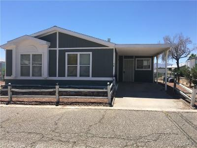 Fort Mohave Manufactured Home For Sale: 2066 El Rodeo Road #58