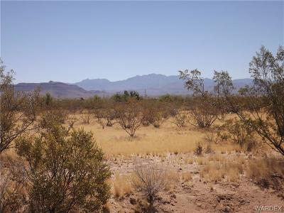 Mohave County Residential Lots & Land For Sale: S San Pedro Road