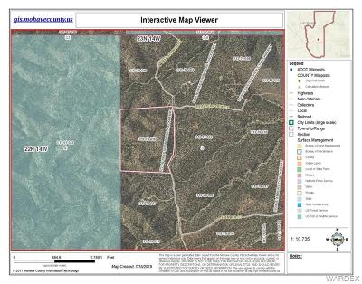 Mohave County Residential Lots & Land For Sale: 6731 N Trap Springs Road