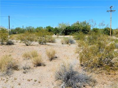 Mohave County Residential Lots & Land For Sale: 30455 N Sandy Point Dr Drive