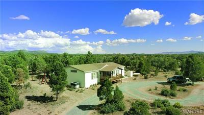 Kingman Single Family Home For Sale: 2790 N Diamond M Ranch #31