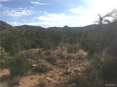 Kingman Residential Lots & Land For Sale: 3533 Vega Court