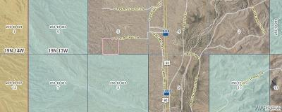 Kingman Residential Lots & Land For Sale: Parcel 18 Cholla Tree Lane