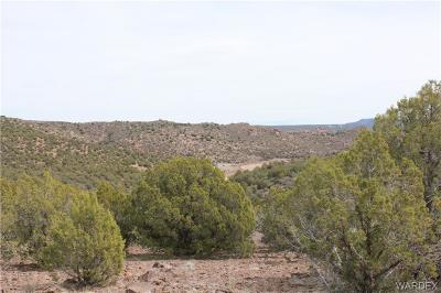 Kingman Residential Lots & Land For Sale: 19898 E Willow Creek Road