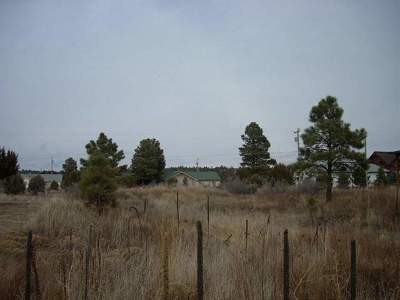 Overgaard AZ Residential Lots & Land For Sale: $7,999