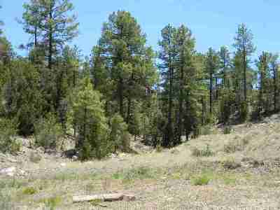 Heber Residential Lots & Land For Sale: 1855 Hwy 260