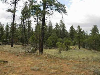 Overgaard AZ Residential Lots & Land For Sale: $129,900