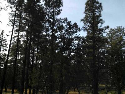 Lakeside Residential Lots & Land For Sale: 10 Acres Porter Mountain And Sponsellor