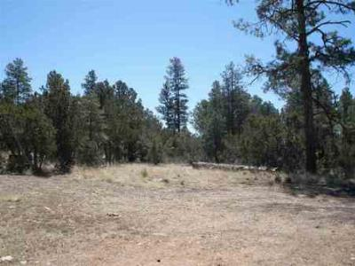 Overgaard AZ Residential Lots & Land Sold: $55,000