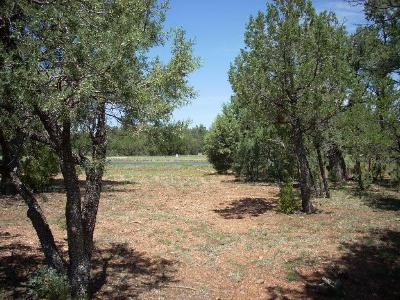 Overgaard AZ Residential Lots & Land For Sale: $124,900