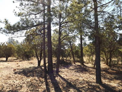 Residential Lots & Land For Sale: 2217 Mountain Lion Lane