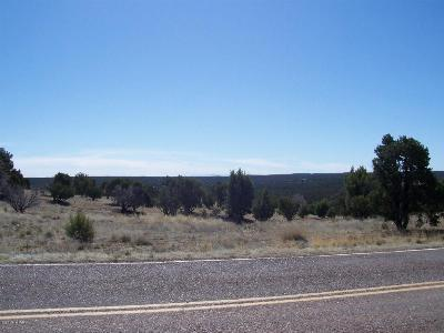 Clay Springs Residential Lots & Land For Sale: 006c Pulp Mill Road