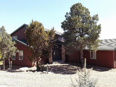 Single Family Home For Sale: 2255 W Bogey Place