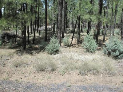 Lakeside Residential Lots & Land For Sale: Lots A-D W Rim Spur Road