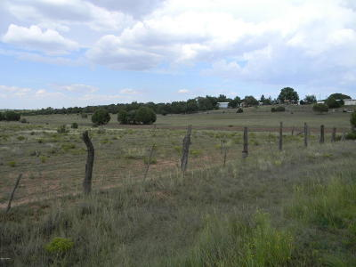 Clay Springs Residential Lots & Land For Sale: 2113 Talc Road