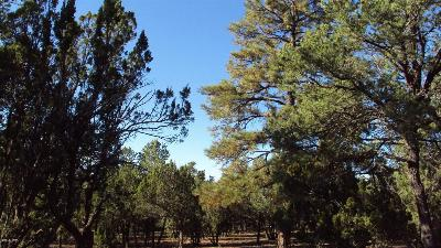 Overgaard AZ Residential Lots & Land For Sale: $356,000