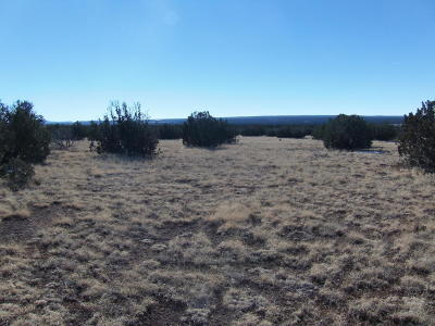 White Mountain Lake Residential Lots & Land For Sale: 8327 Valley View Lane