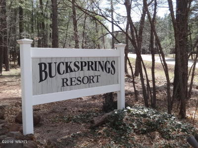 Pinetop Commercial For Sale: 6126 Buck Springs Road