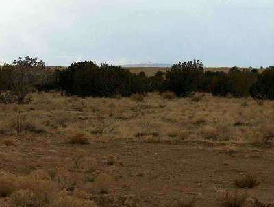 Overgaard Residential Lots & Land For Sale: Lot 631 Chevelon Canyon Ranch 4 Road