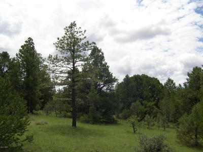 Vernon AZ Residential Lots & Land For Sale: $78,000