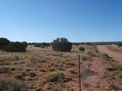 Navajo County Residential Lots & Land For Sale: 4517 Clydesdale Road