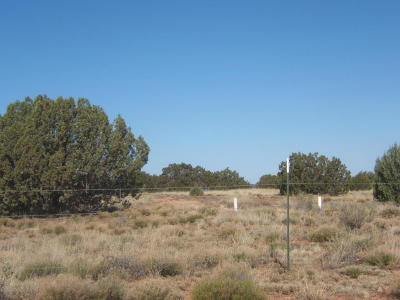 Navajo County Residential Lots & Land For Sale: 4518 S Pinto Road