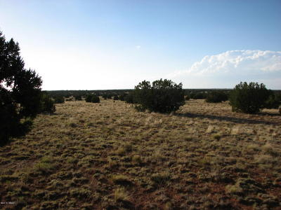 Overgaard Residential Lots & Land For Sale: Lot 401 Chevelon Canyon Ranch 3