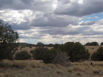 Navajo County Residential Lots & Land For Sale: 4498 Appaloosa Road