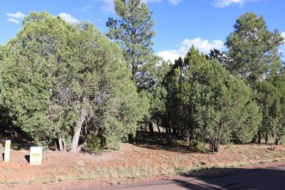 Navajo County Residential Lots & Land For Sale: 2753 Kitty Hawk Lane